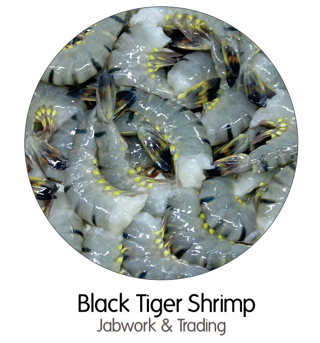 black-tiger-shrimp