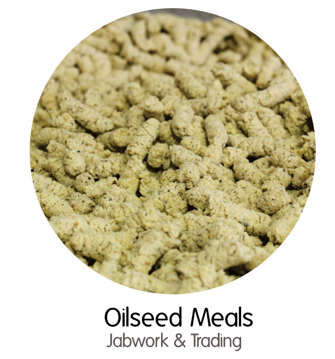 oilseed-meals