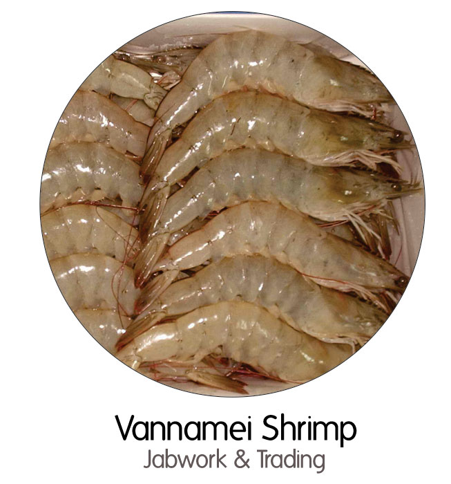 vannamei-shrimp